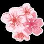 Hoa đào xuân